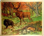 Poster  The Wild Animals  Wild Boar Deer  and Fox Henry Baudot  circa  1900