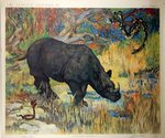 Poster  The Wild Animals  Rinoceros Henry Baudot  circa  1900