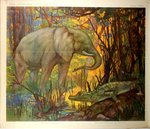Poster African  Elephant and Aligator  The  Wild  Annimals  Henry  Baudot  Circa 1900